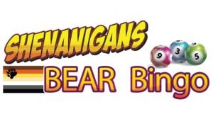 Shenanigans Bear Bingo @ Christophs